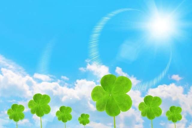 京都市 整体オフィス空流 施術料金の返金保証