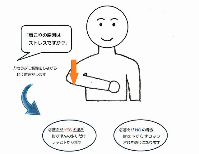 京都 整体オフィス空流 カラダの声を聴く検査